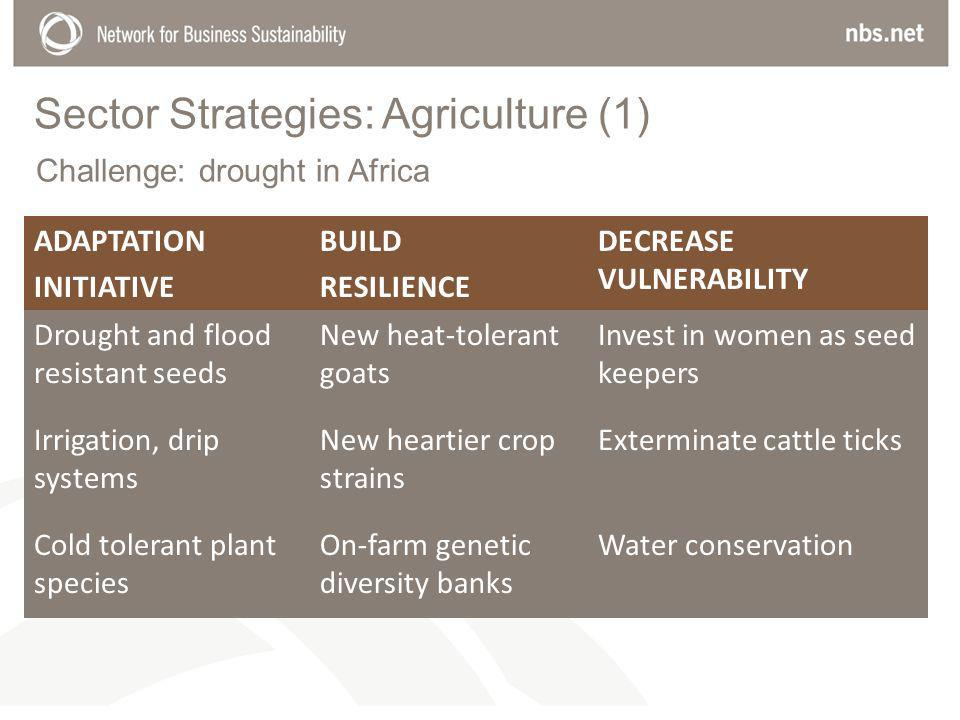 Sector Strategies: Agriculture (1) ADAPTATION INITIATIVE BUILD RESILIENCE DECREASE VULNERABILITY Drought and flood resistant seeds New heat-tolerant goats Invest in women as seed keepers Irrigation, drip systems New heartier crop strains Exterminate cattle ticks Cold tolerant plant species On-farm genetic diversity banks Water conservation Challenge: drought in Africa