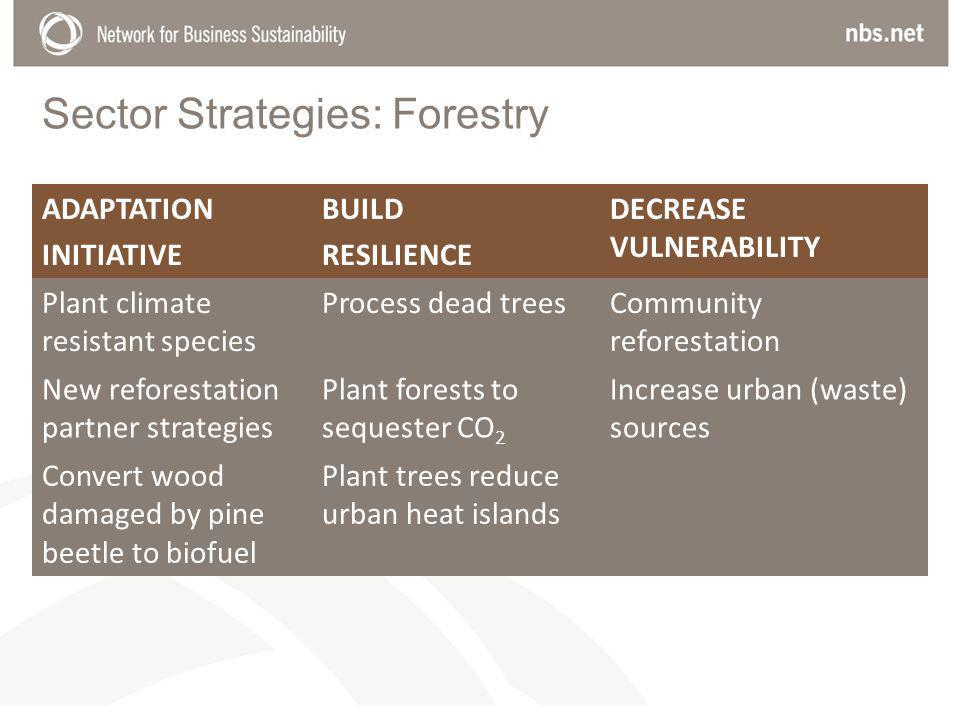 Sector Strategies: Forestry ADAPTATION INITIATIVE BUILD RESILIENCE DECREASE VULNERABILITY Plant climate resistant species Process dead treesCommunity reforestation New reforestation partner strategies Plant forests to sequester CO 2 Increase urban (waste) sources Convert wood damaged by pine beetle to biofuel Plant trees reduce urban heat islands