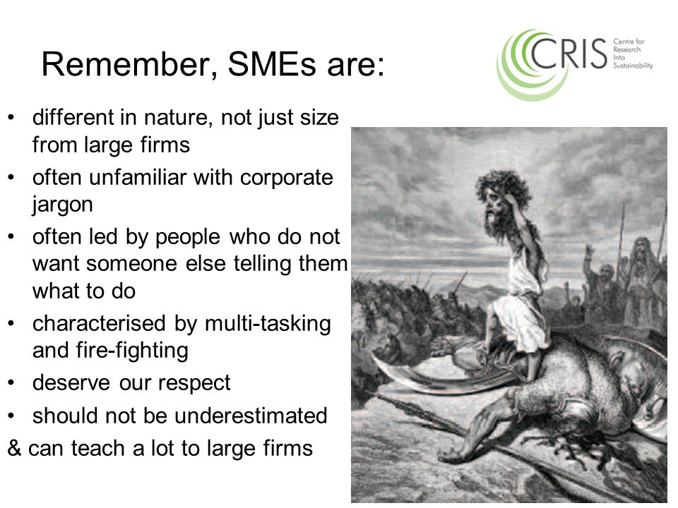 Remember, SMEs are: different in nature, not just size from large firms often unfamiliar with corporate jargon often led by people who do not want som