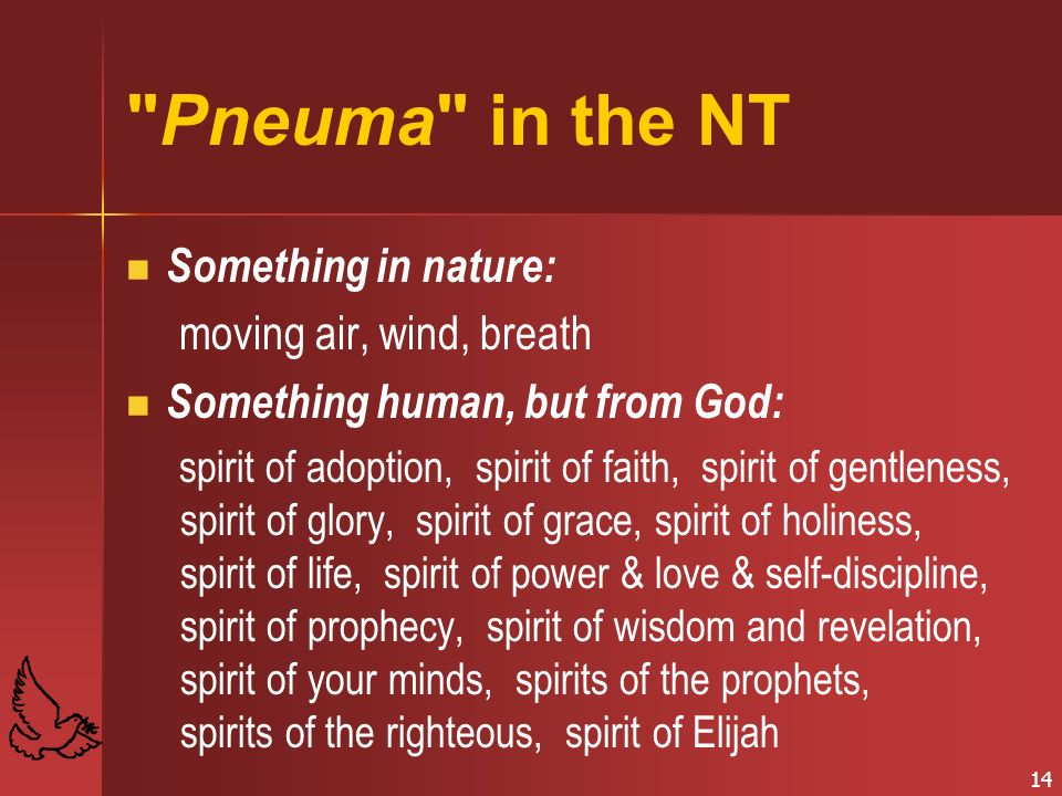 14 Pneuma in the NT Something in nature: moving air, wind, breath Something human, but from God: spirit of adoption, spirit of faith, spirit of gentleness, spirit of glory, spirit of grace, spirit of holiness, spirit of life, spirit of power & love & self-discipline, spirit of prophecy, spirit of wisdom and revelation, spirit of your minds, spirits of the prophets, spirits of the righteous, spirit of Elijah