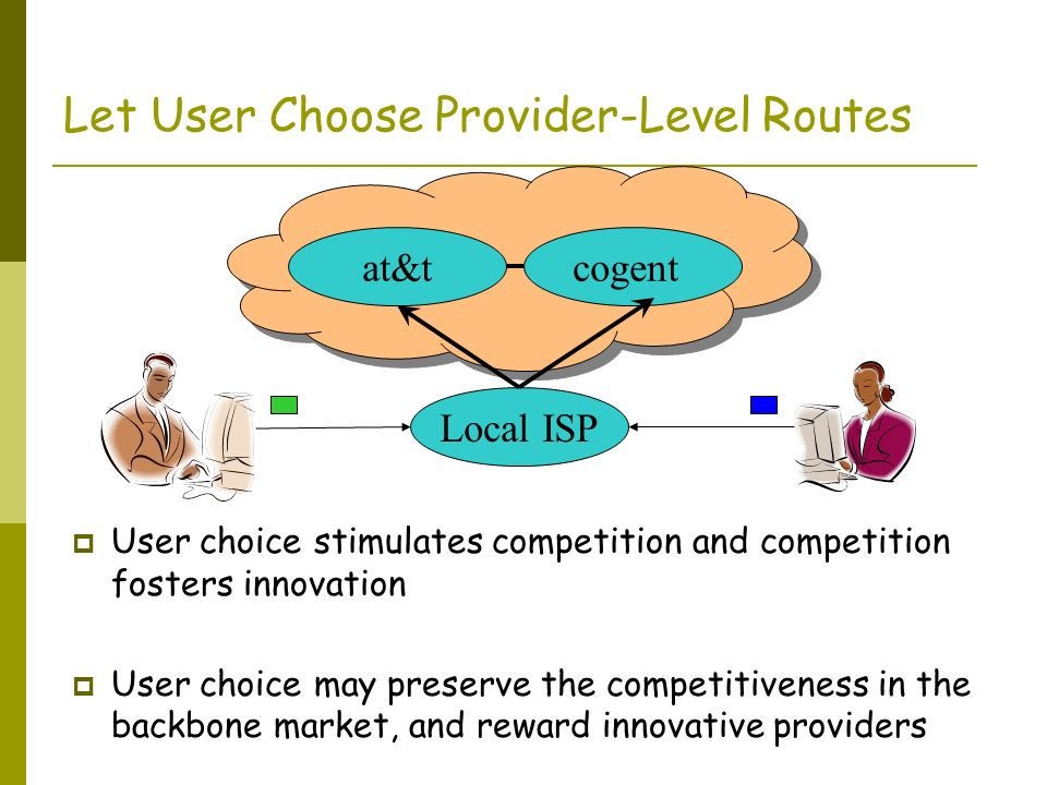 Let User Choose Provider-Level Routes User choice stimulates competition and competition fosters innovation User choice may preserve the competitivene