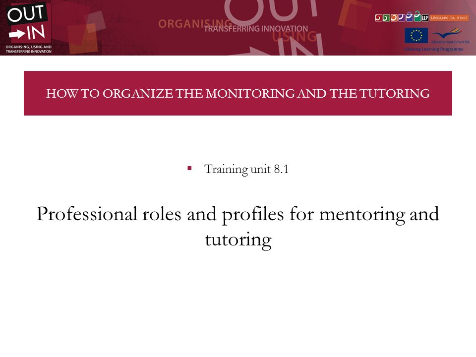 HOW TO ORGANIZE THE MONITORING AND THE TUTORING Training unit 8.1 Professional roles and profiles for mentoring and tutoring