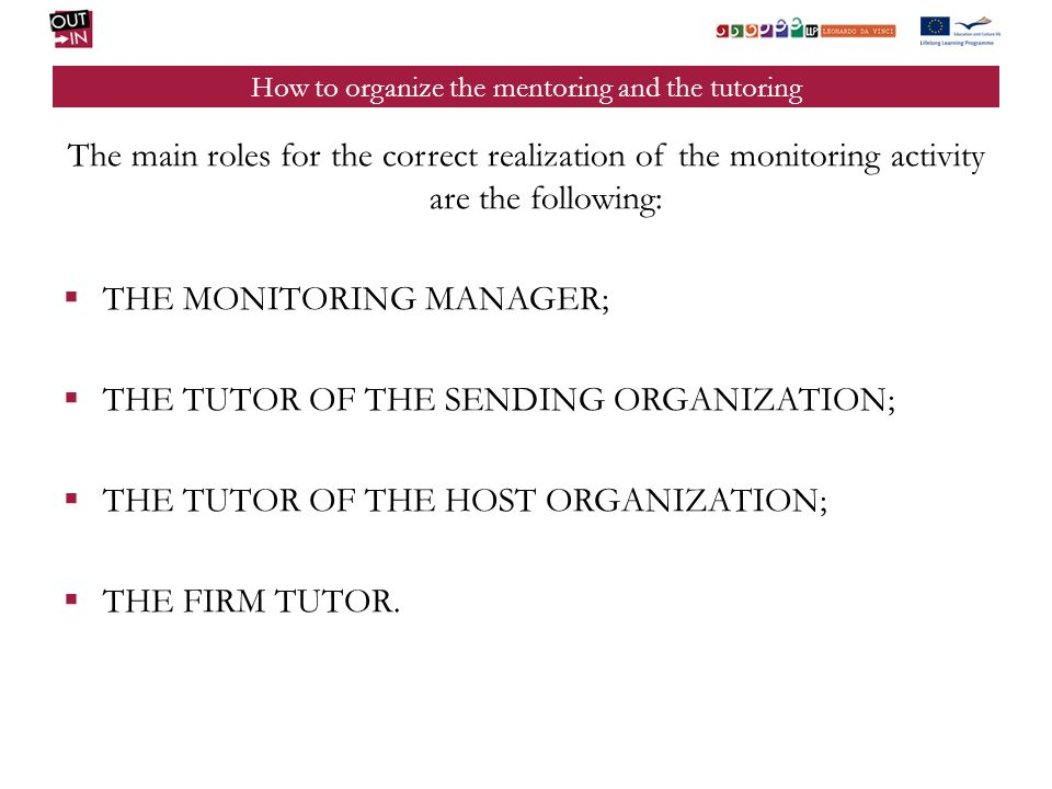 How to organize the mentoring and the tutoring MONITORING MANAGER: he is in charge of the general approach and of the monitoring and of its implementation; he takes care of the organization of the tools, coordinates the work of the tutors, carries out information gathering activities, produces the established reporting.