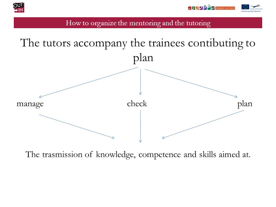 How to organize the mentoring and the tutoring The tutors accompany the trainees contibuting to plan managecheckplan The trasmission of knowledge, competence and skills aimed at.