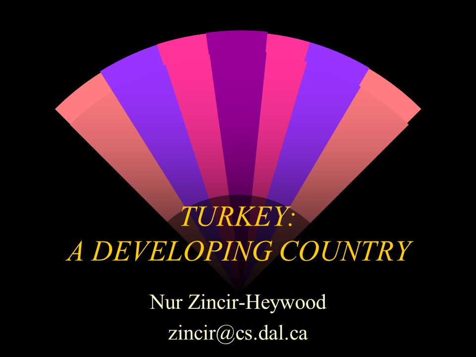 TURKEY: A DEVELOPING COUNTRY Nur Zincir-Heywood