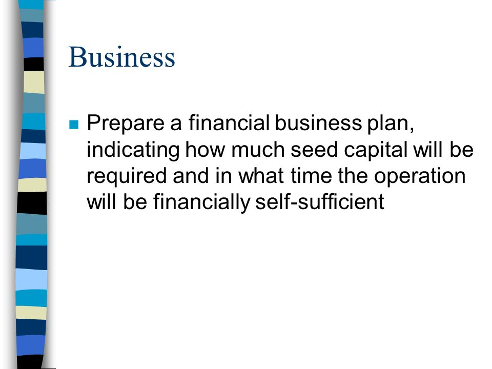 Business n Prepare a financial business plan, indicating how much seed capital will be required and in what time the operation will be financially self-sufficient