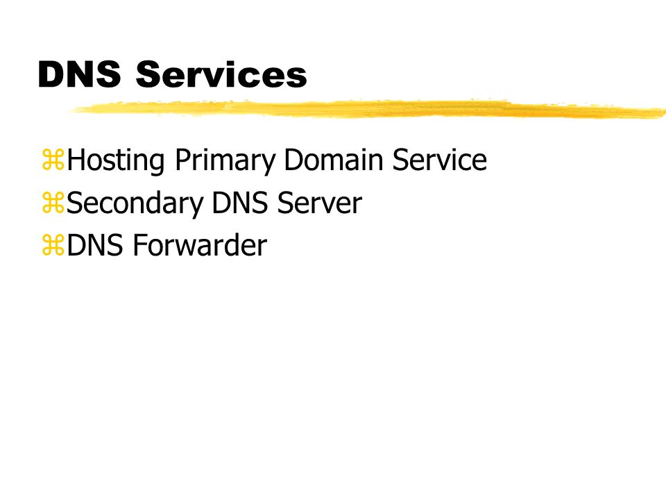 DNS Services zHosting Primary Domain Service zSecondary DNS Server zDNS Forwarder