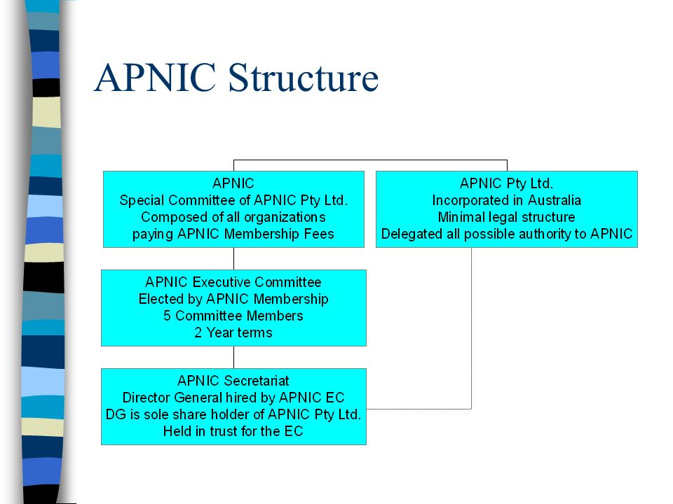 APNIC Structure