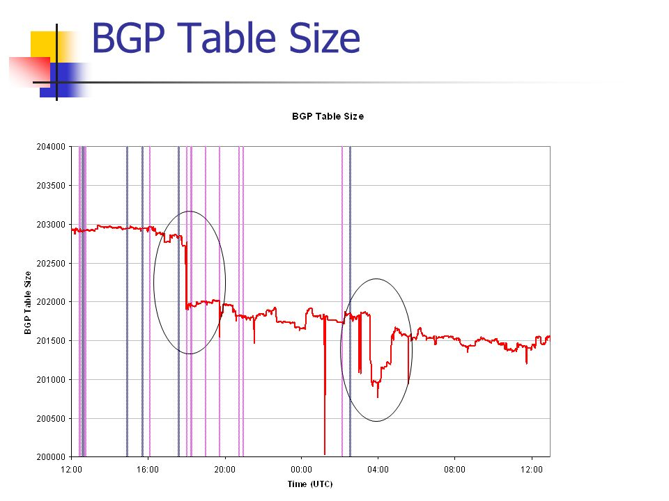 BGP Table Size
