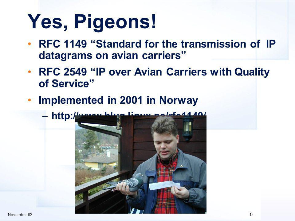 November 0212 Yes, Pigeons.