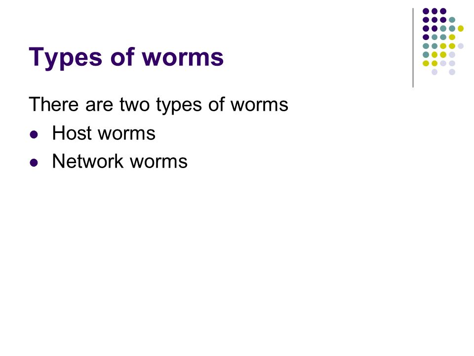 Types of worms There are two types of worms Host worms Network worms