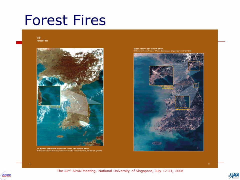 The 22 nd APAN Meeting, National University of Singapore, July 17-21, 2006 Forest Fires