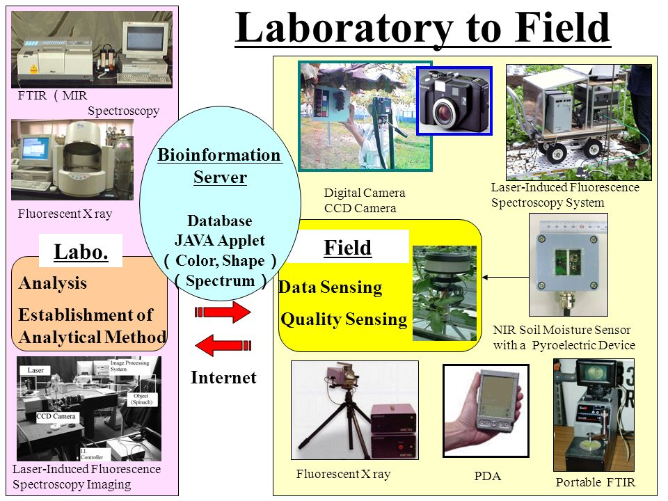 Laboratory to Field FTIR MIR Spectroscopy Fluorescent X ray Labo. Analysis Establishment of Analytical Method Laser-Induced Fluorescence Spectroscopy