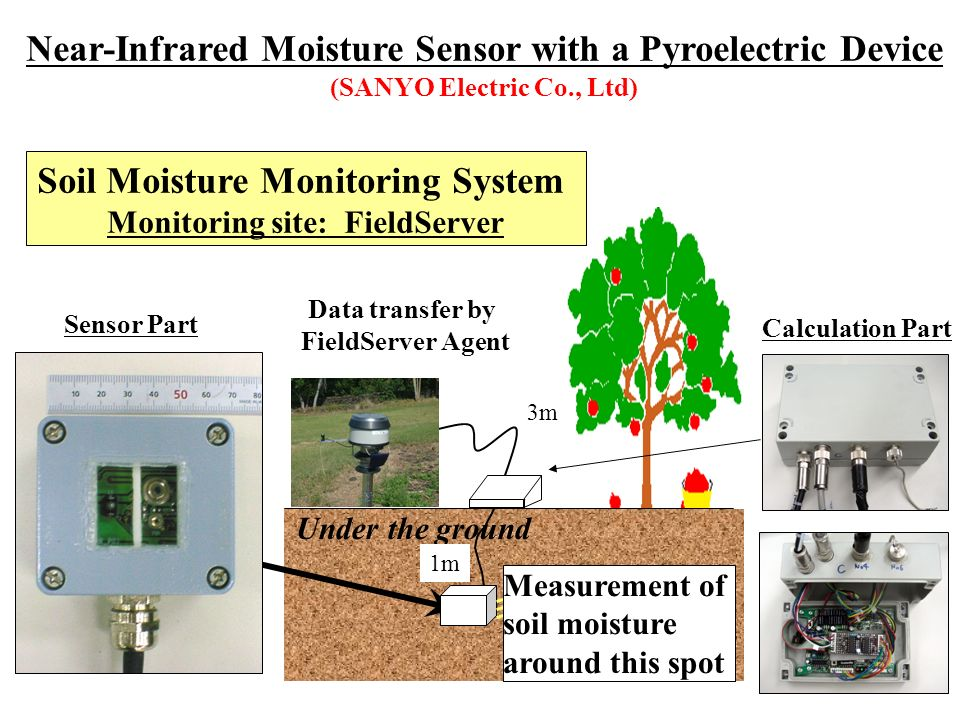 Data transfer by FieldServer Agent Under the ground Measurement of soil moisture around this spot 1m 3m Soil Moisture Monitoring System Monitoring sit