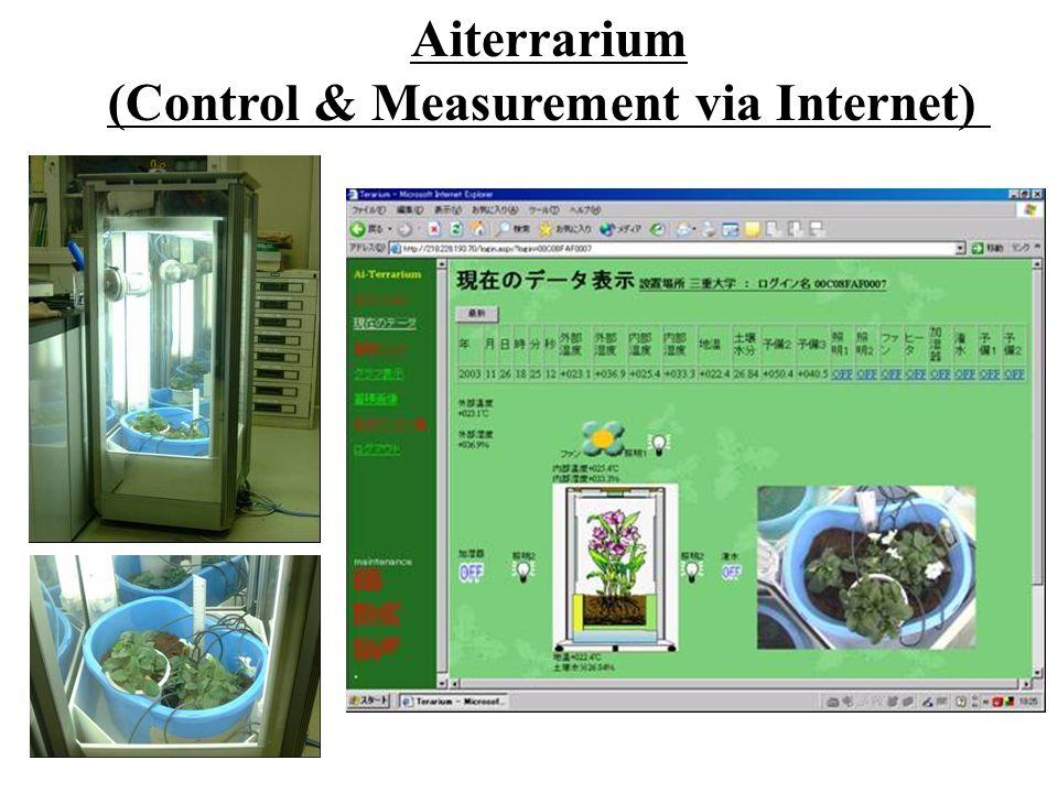 Aiterrarium (Control & Measurement via Internet)