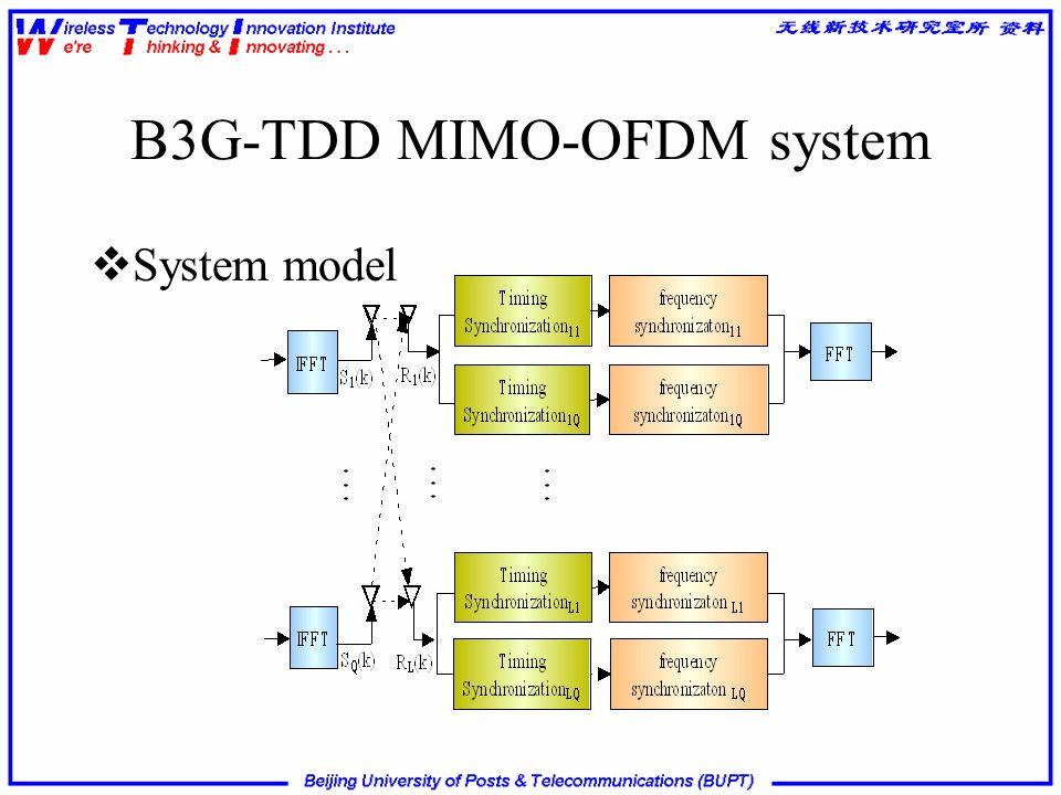B3G-TDD MIMO-OFDM system System model