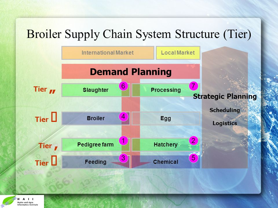 Broiler Supply Chain System Structure (Tier) Feeding Chemical Pedigree farmHatchery BroilerEgg SlaughterProcessing International MarketLocal Market De
