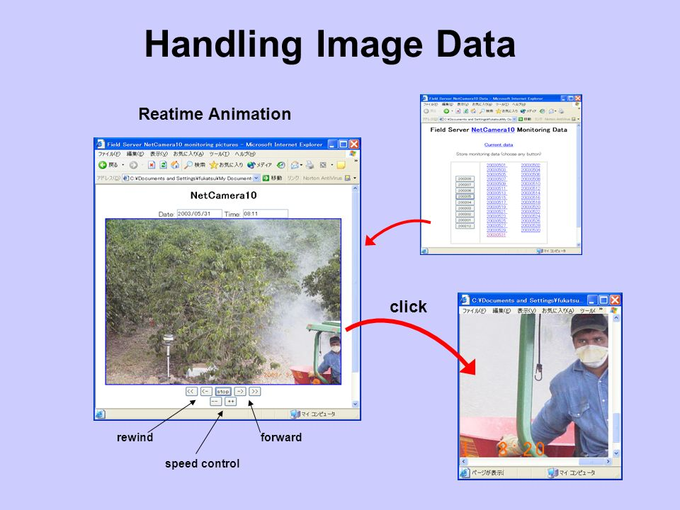 Handling Image Data Reatime Animation click rewindforward speed control