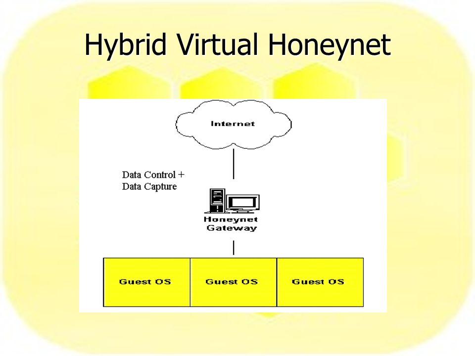 Hybrid Virtual Honeynet