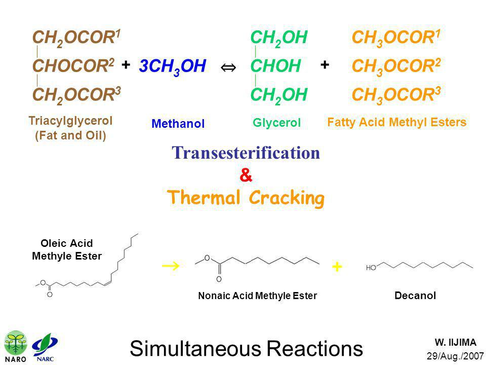 W. IIJIMA 29/Aug./2007 Simultaneous Reactions Oleic Acid Methyle Ester Decanol Nonaic Acid Methyle Ester + Transesterification & Thermal Cracking Tria