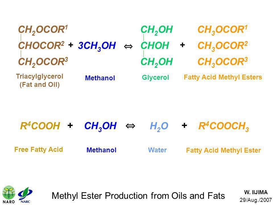 W. IIJIMA 29/Aug./2007 Methyl Ester Production from Oils and Fats Free Fatty Acid Methanol Fatty Acid Methyl Ester CH 3 OH R 4 COOCH 3 + + R 4 COOHH2O