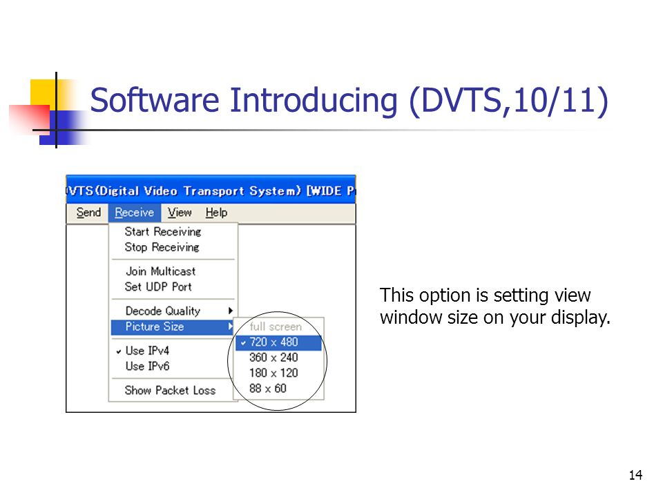 14 Software Introducing (DVTS,10/11) This option is setting view window size on your display.
