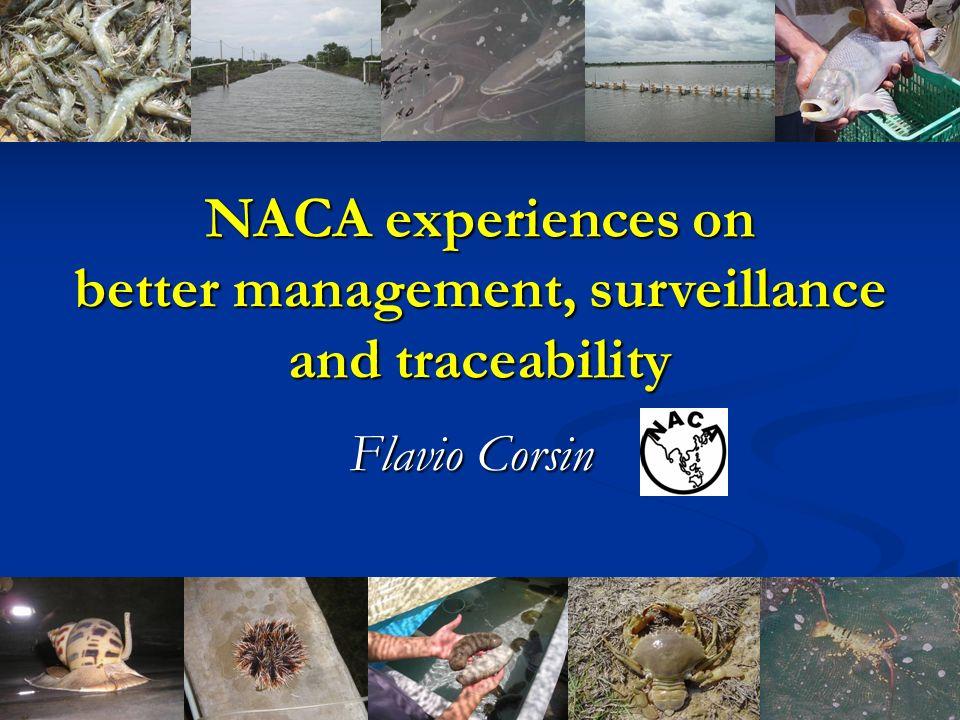 Flavio Corsin NACA experiences on better management, surveillance and traceability