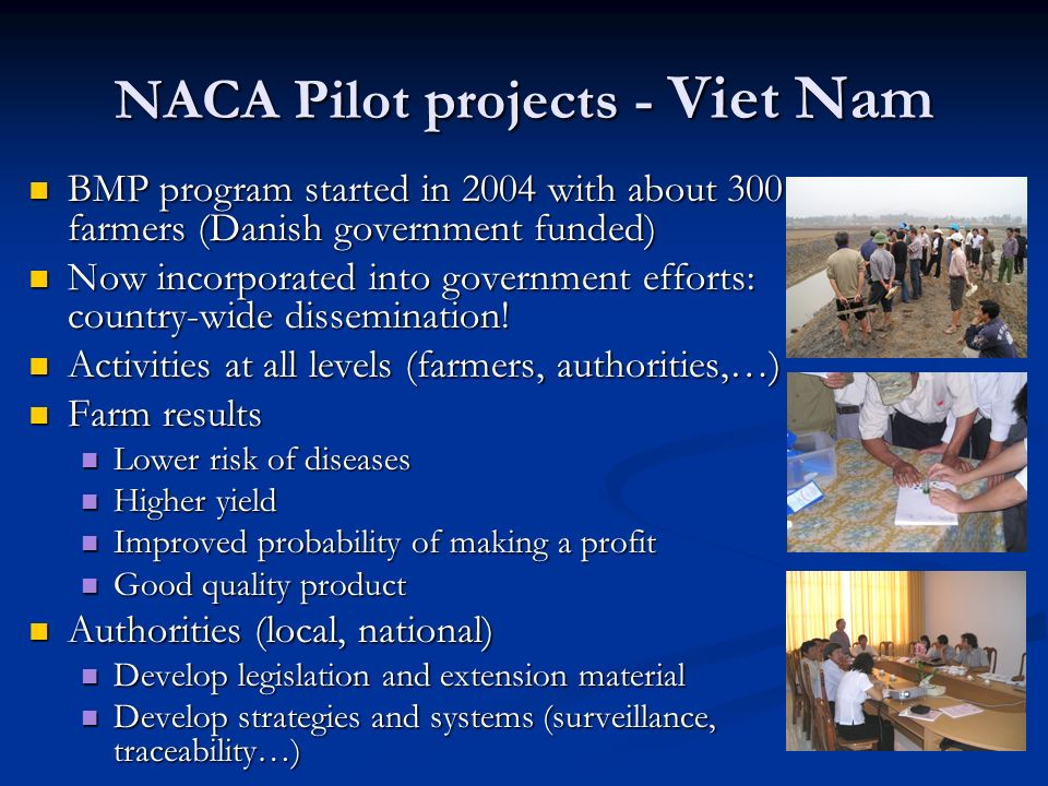 NACA Pilot projects - Viet Nam BMP program started in 2004 with about 300 farmers (Danish government funded) BMP program started in 2004 with about 30