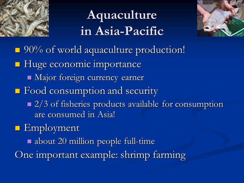 Shrimp farming Global shrimp production (in 2003) Global shrimp production (in 2003) 1.8 million metric tons 1.8 million metric tons Valued USD 9.3 billion Valued USD 9.3 billion Asia produced (in 2003) Asia produced (in 2003) 1.5 m.m.t.