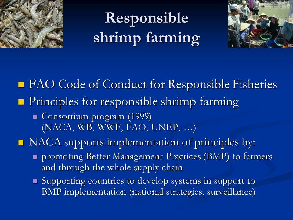 Responsible shrimp farming FAO Code of Conduct for Responsible Fisheries FAO Code of Conduct for Responsible Fisheries Principles for responsible shri