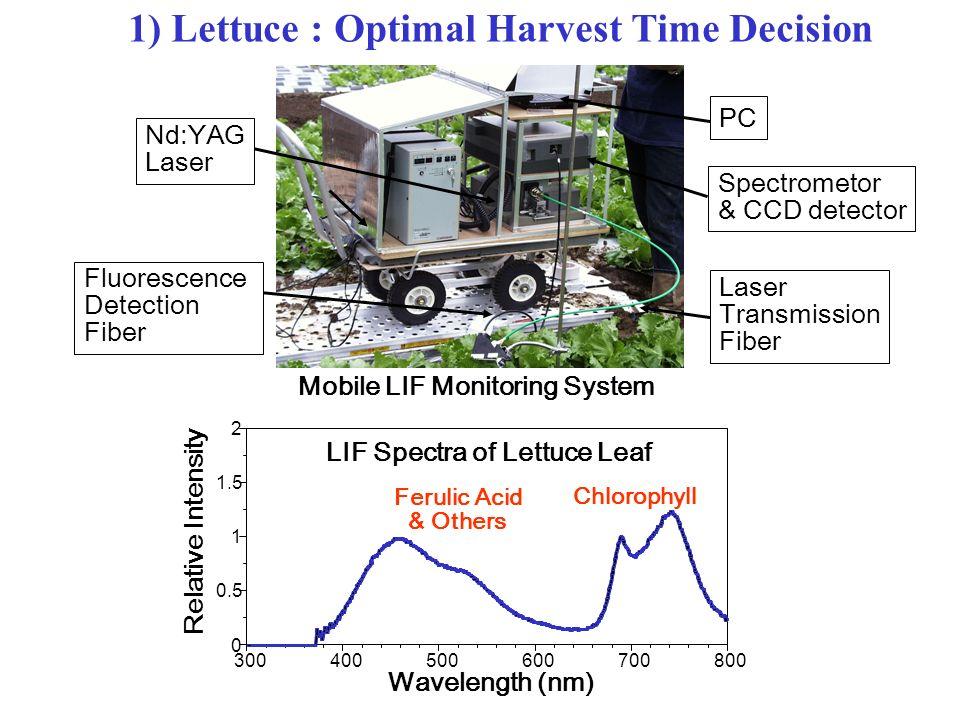 1) Lettuce : Optimal Harvest Time Decision PC Spectrometor & CCD detector Nd:YAG Laser Transmission Fiber Fluorescence Detection Fiber 0 0.5 1 1.5 2 3