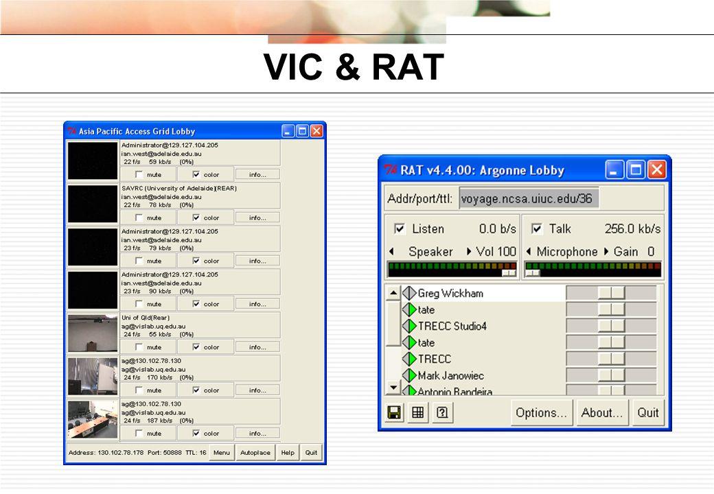 VIC & RAT