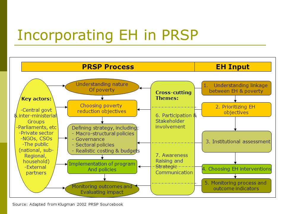 Incorporating EH in PRSP Understanding nature Of poverty Choosing poverty reduction objectives Implementation of program And policies Defining strateg