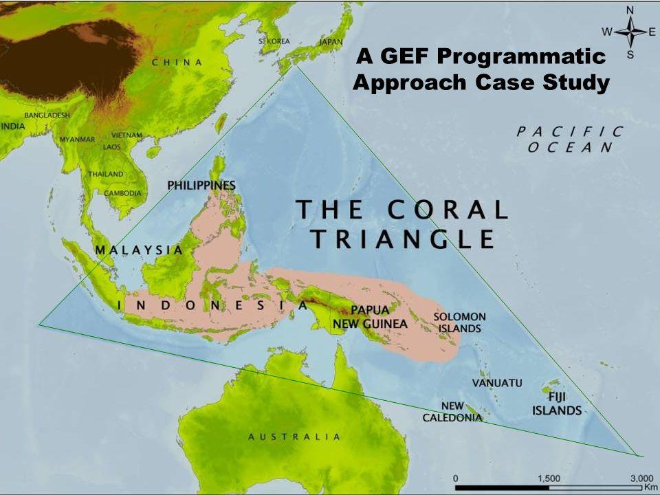 A GEF Programmatic Approach Case Study