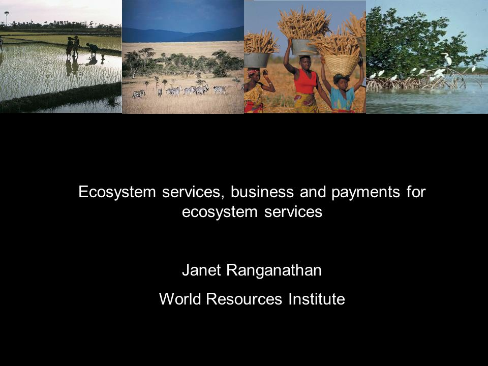 Ecosystem services, business and payments for ecosystem services Janet Ranganathan World Resources Institute