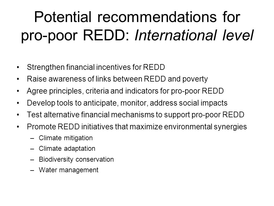 Potential recommendations for pro-poor REDD: International level Strengthen financial incentives for REDD Raise awareness of links between REDD and poverty Agree principles, criteria and indicators for pro-poor REDD Develop tools to anticipate, monitor, address social impacts Test alternative financial mechanisms to support pro-poor REDD Promote REDD initiatives that maximize environmental synergies –Climate mitigation –Climate adaptation –Biodiversity conservation –Water management