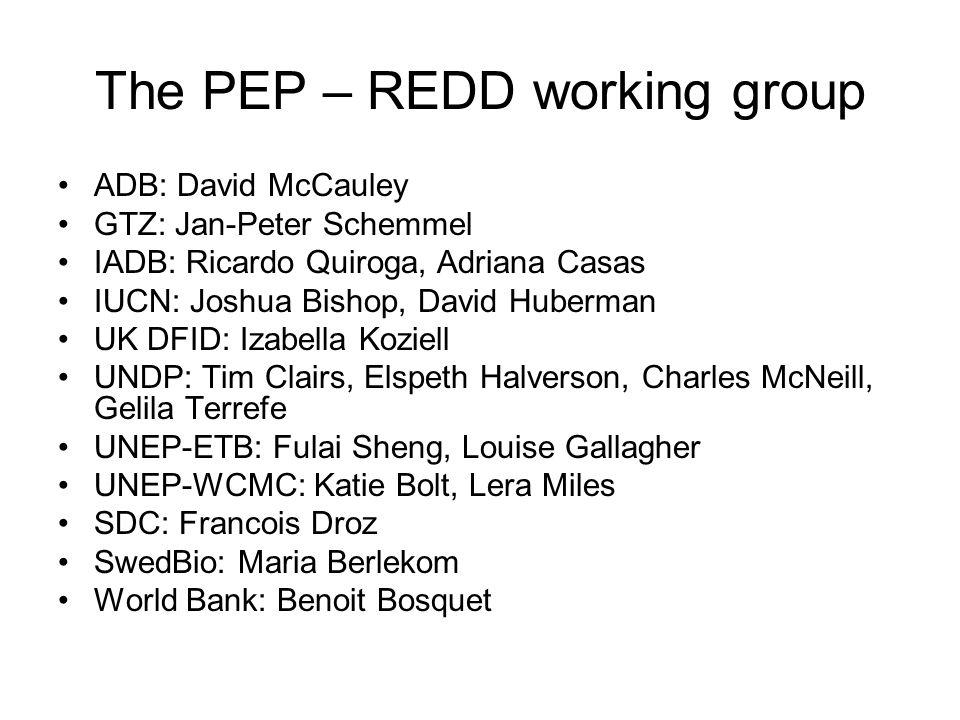 The PEP – REDD working group ADB: David McCauley GTZ: Jan-Peter Schemmel IADB: Ricardo Quiroga, Adriana Casas IUCN: Joshua Bishop, David Huberman UK D