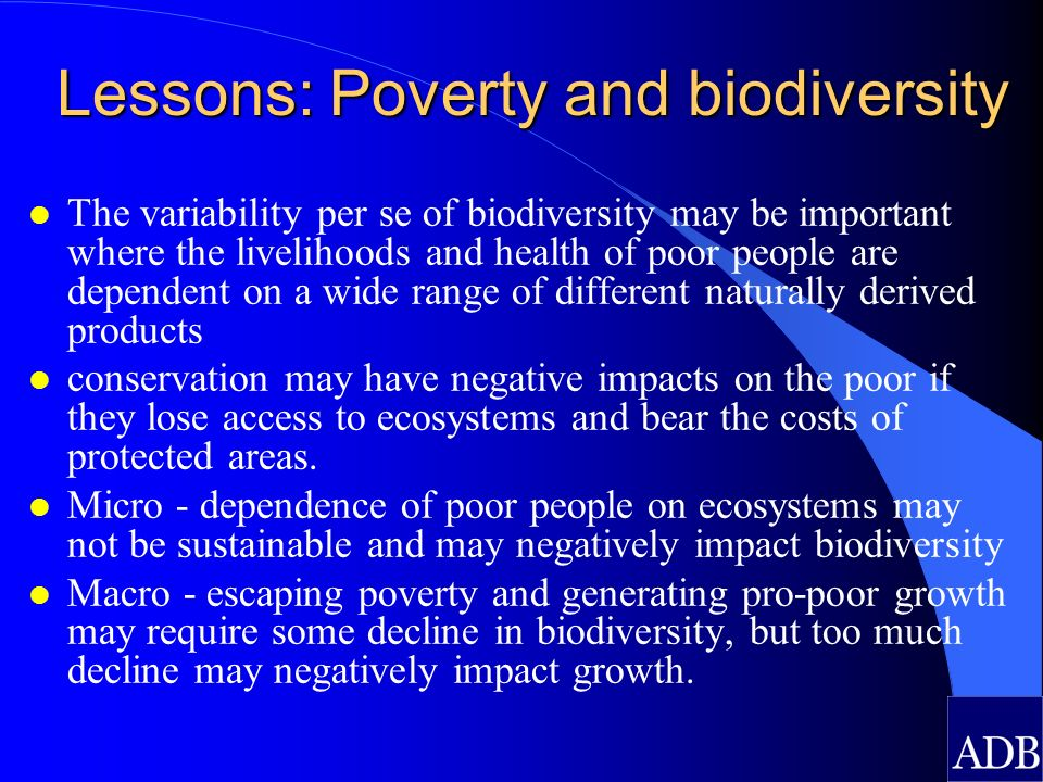Lessons: Poverty and biodiversity l The variability per se of biodiversity may be important where the livelihoods and health of poor people are depend