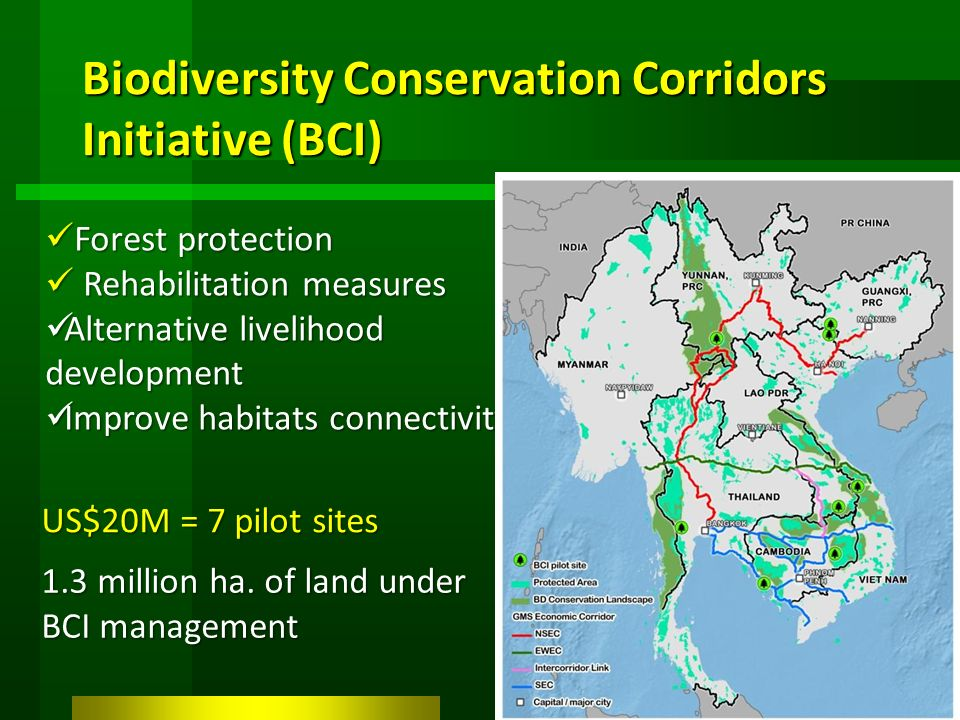 Biodiversity Conservation Corridors Initiative (BCI) Forest protection Forest protection Rehabilitation measures Rehabilitation measures Alternative livelihood development Alternative livelihood development Improve habitats connectivity Improve habitats connectivity US$20M = 7 pilot sites 1.3 million ha.