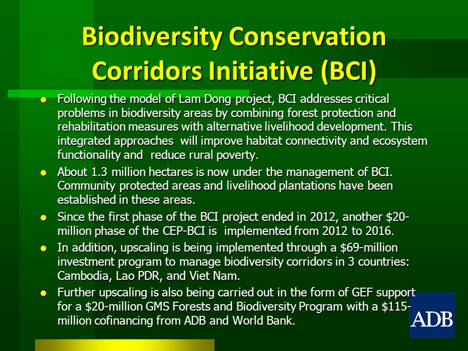 Biodiversity Conservation Corridors Initiative (BCI) Following the model of Lam Dong project, BCI addresses critical problems in biodiversity areas by combining forest protection and rehabilitation measures with alternative livelihood development.