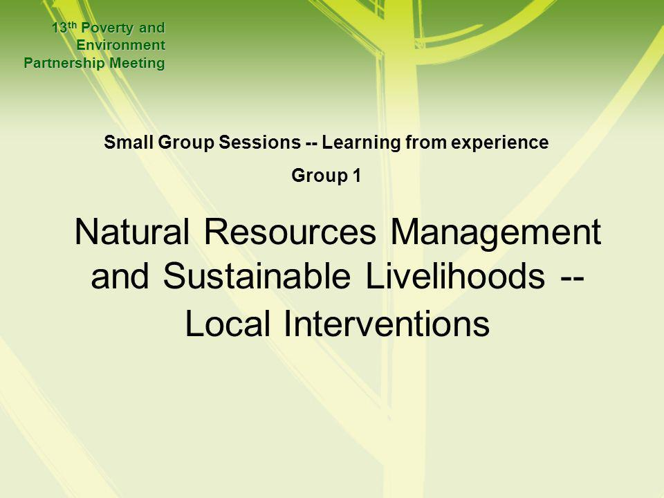 Natural Resources Management and Sustainable Livelihoods -- Local Interventions 13 th Poverty and Environment Partnership Meeting Small Group Sessions