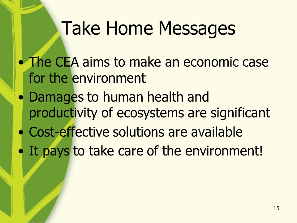 15 Take Home Messages The CEA aims to make an economic case for the environment Damages to human health and productivity of ecosystems are significant Cost-effective solutions are available It pays to take care of the environment!