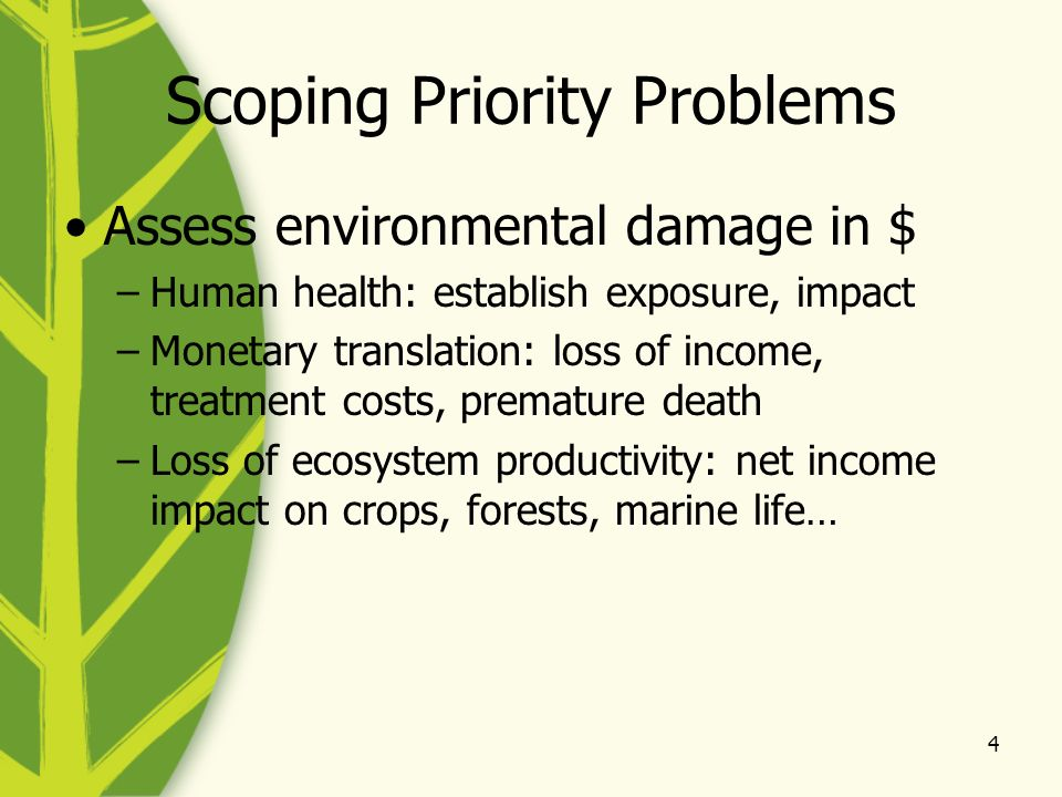 4 Scoping Priority Problems Assess environmental damage in $ –Human health: establish exposure, impact –Monetary translation: loss of income, treatment costs, premature death –Loss of ecosystem productivity: net income impact on crops, forests, marine life…