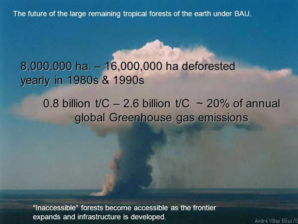 The future of the large remaining tropical forests of the earth under BAU.