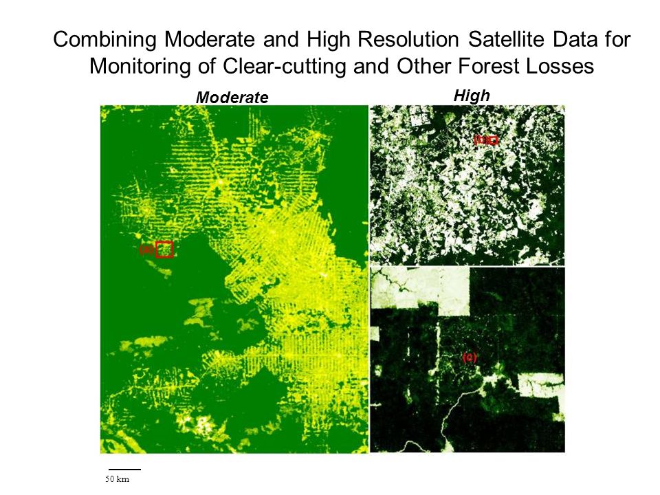 Combining Moderate and High Resolution Satellite Data for Monitoring of Clear-cutting and Other Forest Losses 50 km Moderate High