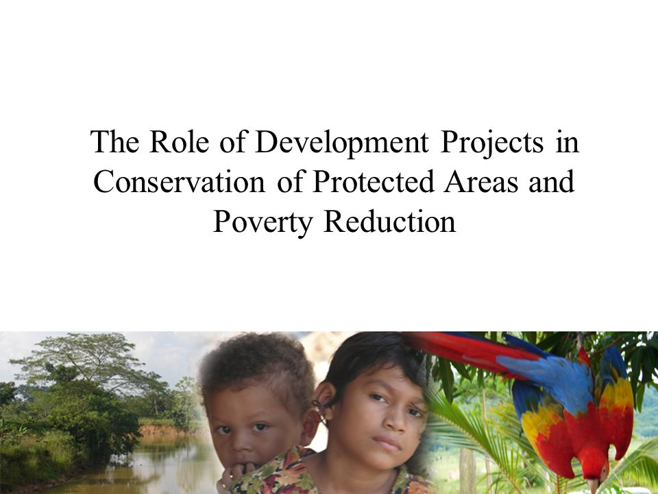 The Role of Development Projects in Conservation of Protected Areas and Poverty Reduction