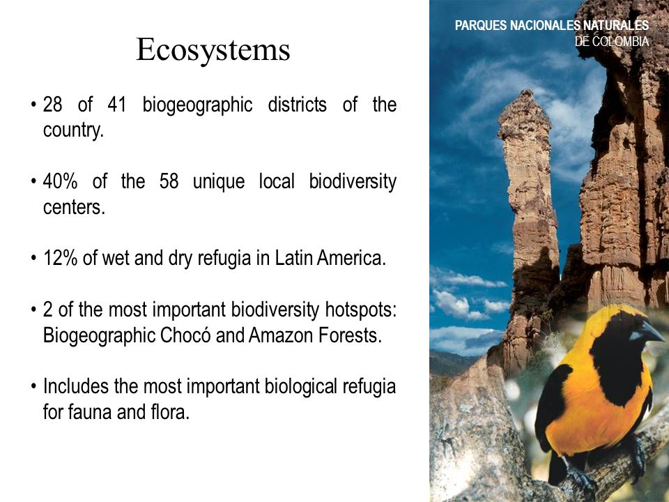 Ecosystems 28 of 41 biogeographic districts of the country. 40% of the 58 unique local biodiversity centers. 12% of wet and dry refugia in Latin Ameri