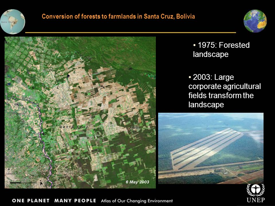 Conversion of forests to farmlands in Santa Cruz, Bolivia 1975: Forested landscape 2003: Large corporate agricultural fields transform the landscape
