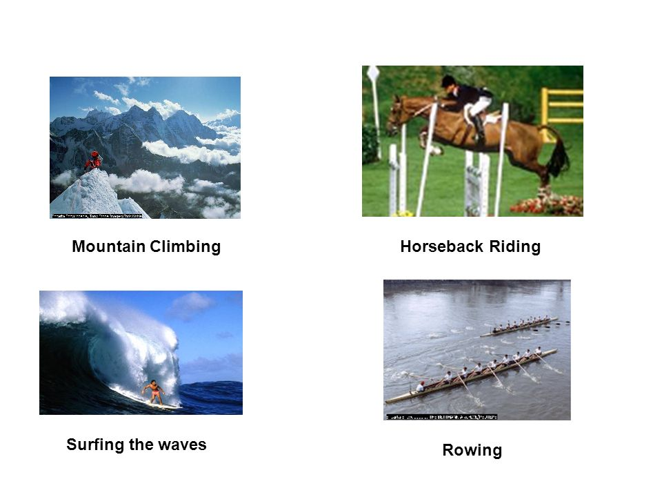 Mountain ClimbingHorseback Riding Surfing the waves Rowing