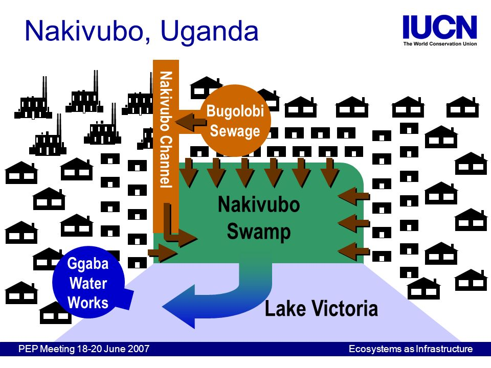 Nakivubo Swamp Lake Victoria Ggaba Water Works Bugolobi Sewage Nakivubo Channel Nakivubo, Uganda PEP Meeting 18-20 June 2007Ecosystems as Infrastructu